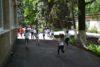 Весенний марафон юных спортсменов.